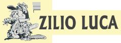 ziliomacchinedagiardino-logoweb