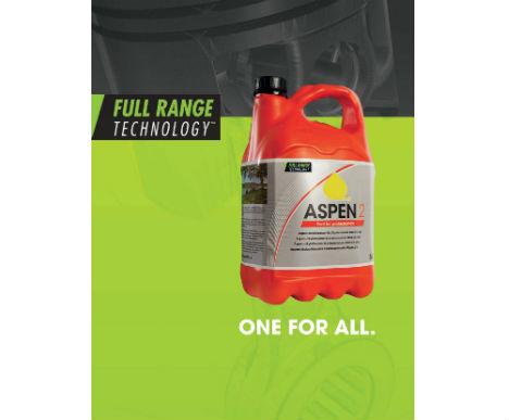 aspen-1 thumb