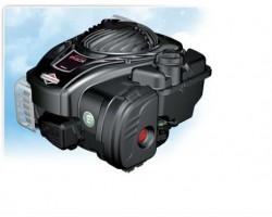 Motore Briggs&Stratton 500E OHV Albero Da 22X60 4 cv
